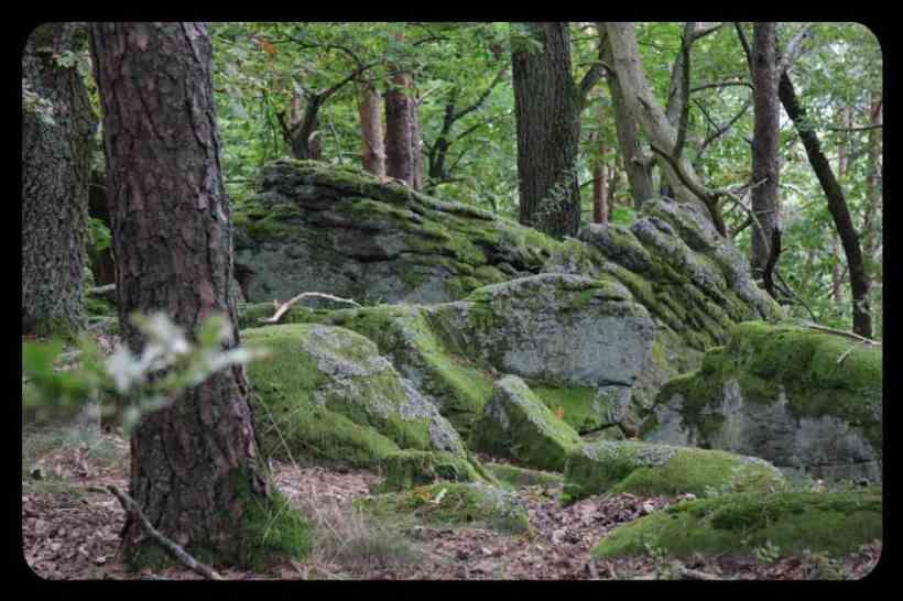 Moosüberzogene Felsen erhöhen die Spannung