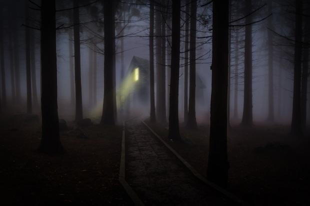 foggy-545838
